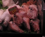 lamb-at-market