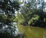 pontevedras-river