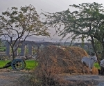 An rural Indian scene