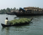 backwaters-3