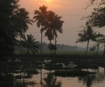 backwaters-6