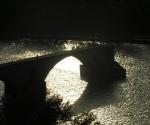 sur-la-pont-davignon
