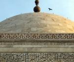 A hawk flies past the building's finial