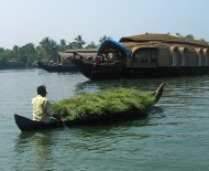 Cochin's backwaters