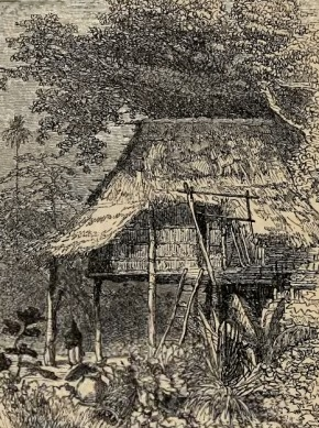 Caption in journal: Laotian House