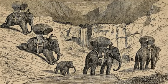 Caption in Mouhot's journal: Caravan of Elephants crossing the Mountains of Laos